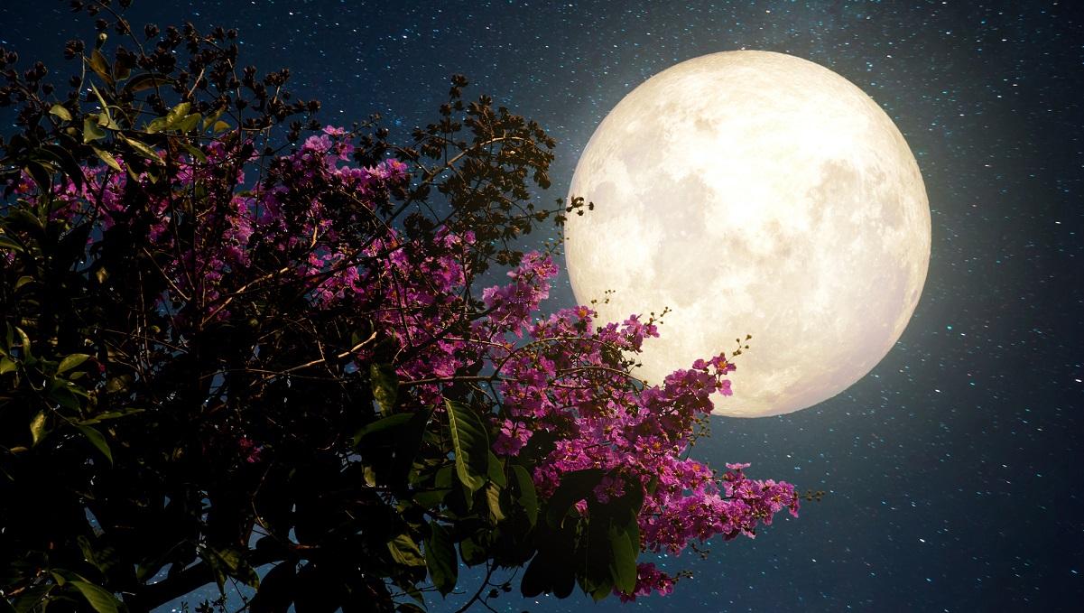 superluna-rosa-signos-zodiaco